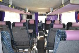 bus 64-82 Southern region